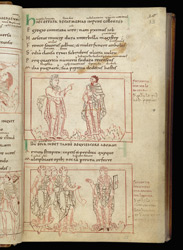 Coloured-Line Drawings Of Long-Suffering Addressing Job And Other Virtues, In Prudentius's 'Conflict Of The Soul'